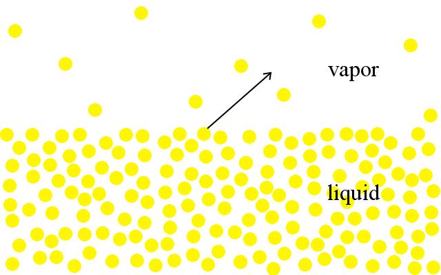 liquid-vapor phase